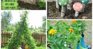 Garden Ideas for Summer. Magical