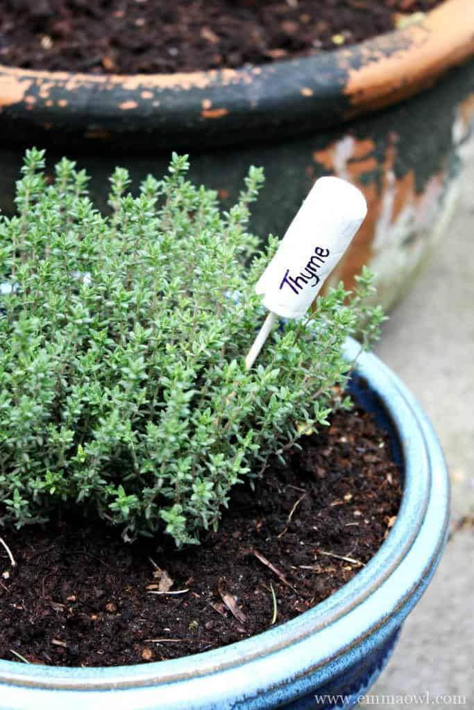 Thyme Cork Marker. Quick and East to make, great addition to any herbs