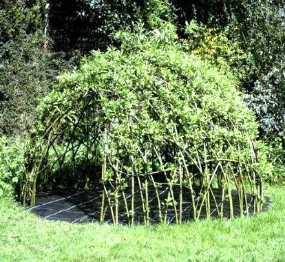 willowden