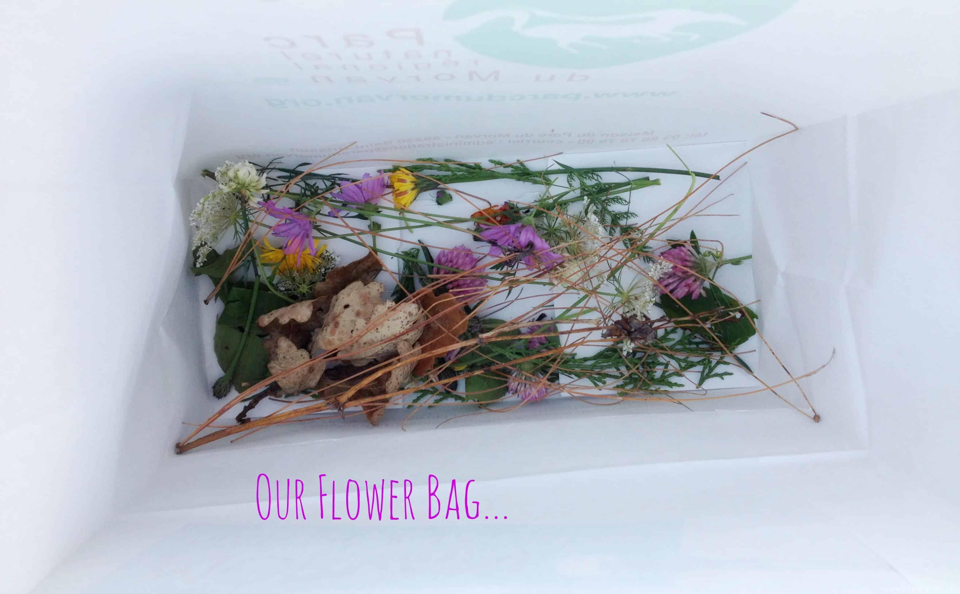 2 beautiful flower art ideas for children pelitabangsa collecting flowers for art izmirmasajfo