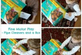 Fine Motor Play – with Pipe Cleaners and A Cardboard Box