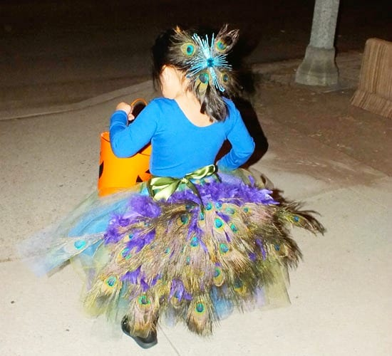 costume-peacock